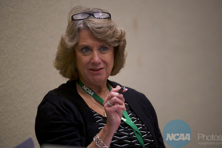 17 JAN 2017: The Division I Council meeting takes place during the 2017 NCAA Convention at the Gaylord Opryland Resort and Convention Center in Nashville, TN.  Jamie Schwaberow/NCAA Photos