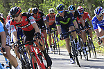 Riders descend off Kemmelberg during Gent-Wevelgem in Flanders Fields 2017 running 249km from Denieze to Wevelgem, Flanders, Belgium. 26th March 2017.<br /> Picture: Eoin Clarke | Cyclefile<br /> <br /> <br /> All photos usage must carry mandatory copyright credit (&copy; Cyclefile | Eoin Clarke)