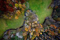 A river runs through a forest with trees changing colour in Autumn in Kashubia.