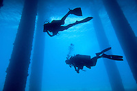 Various scenes beneath the Fredericksted pier, Fredericksted, St. Croix, USVISilhouette of diver(s)