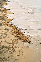 Saleh Shehab Resort's Beach