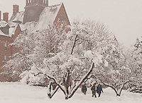 Students walk in front of Old Mill in a snowstorm.  Winter UVM Campus