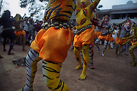 Pulikali dance performance at Trichur, Kerala, India..Pulikali or Kaduvvakali is a two hundred year old folk dance form, practised mostly in Thrissur and Palghat districts of Kerala. It liberally makes use of forms and symbols of nature that finds expression in its bright, bold body painting and high-energy dance movements. The philosophy of Pulikali is that human and nature are integral parts of each other. So by fusing man and beast in its artistic language, it flamboyantly celebrates the connection. Arindam Mukherjee
