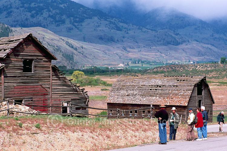 Old Wood Heritage Farm House and Barn on Haynes Ranch near Osoyoos, South Okanagan Valley, BC, British Columbia, Canada - Bird Watchers on Field Trip