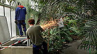 Tropical Rainforest Glasshouse (formerly Le Jardin d'Hiver or Winter Gardens), 1936, René Berger, Jardin des Plantes, Museum National d'Histoire Naturelle, Paris, France. Panoramic view from behind of welders working amongst the Tropical plants in the Art Deco style Glasshouse.