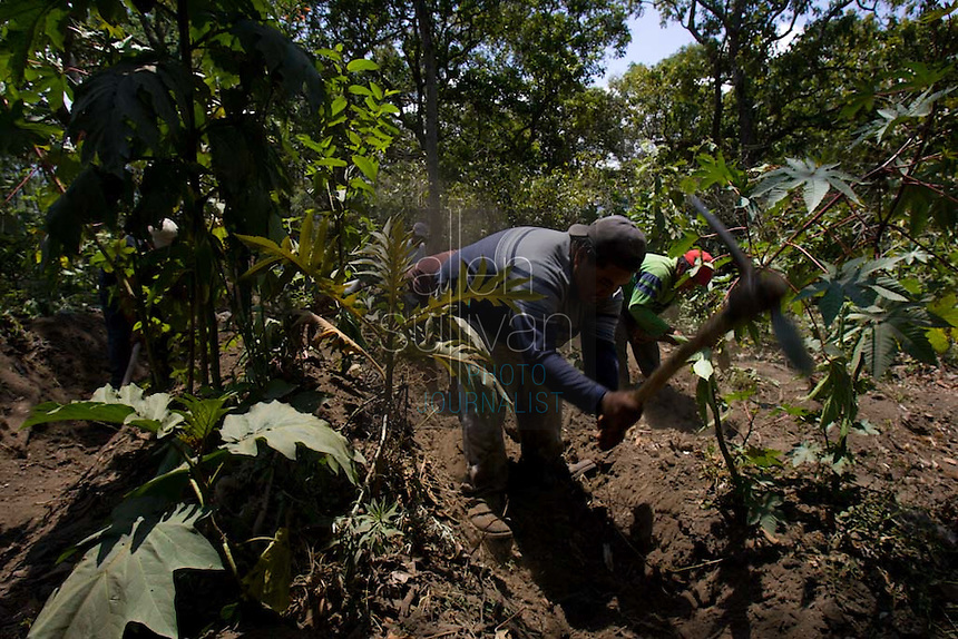 Workers dig trenches in an area of Panabaj, Guatemala on Tuesday, March 20, 2007 during a search for buried bodies. A deadly mudslide here was spawned by rains associated with Hurricane Stan in October 2005. Initially, up to 500 Tzujutil Maya villagers were believed to have been killed by the mudslide, which essentially  wiped away the town. Forensic anthropologists from the Fundación de Antropología Forense de Guatemala have been working to unearth the bodies of the missing and have recovered more than 100. They have also found the number of missing to be lower than originally thought, after many people were located in shelters or living in other towns after the disaster.