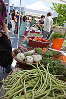 World Crops project vegetables, including long beans, Pinstripe and Round Green eggplants at Wychwood farmers market.