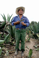 Carlos Valencia a Tlaquechero (a field worker) in the Maguey fields of the Deo Razo family. The Del Razo family have discovered a way to can pulque without it exploding, this allows them to export to the US and Germany. Pulque route, Nanacamilpa Tlaxcala, Mexico June 5, 2007