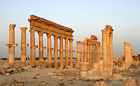 The Great Colonnade, along the Cardo Maximus or main street, 1.2 kms in length with porticoes at each end, 2nd century AD, Palmyra, Syria. In Roman city-planning, the Cardo Maximus runs north-south, intersecting with the east-west Decumanus Maximus Picture by Manuel Cohen