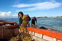 Bessy and her husband Victor checking their seaweed together. Seaweed farming can be a real sustainable family business.