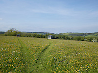 A narrow grass path divides in the middle of a buttercup-covered meadow, one leading to a traditional wooden cabin, the other to a contemporary take on the classic shepherd's hut