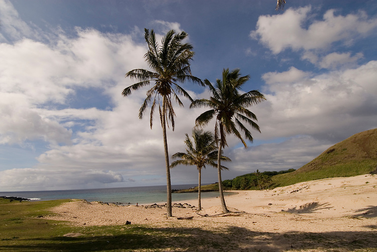 Chile, Easter Island: Anakena Beach, a white coral sand beach with palm trees and several restored moai or statues..Photo #:  ch290-33862.Photo copyright Lee Foster www.fostertravel.com lee@fostertravel.com 510-549-2202