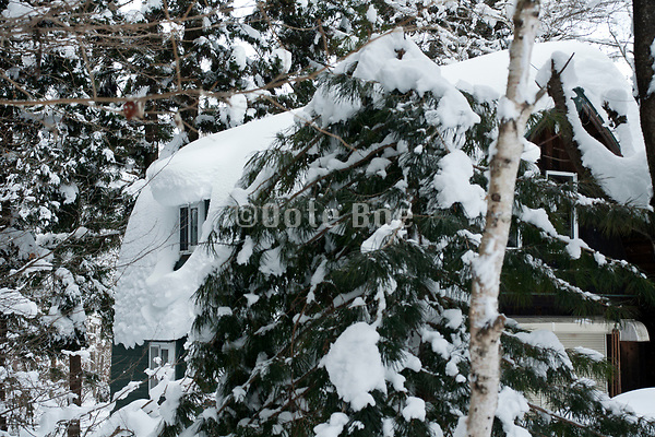 house covered with a thick layer of snow on the roof