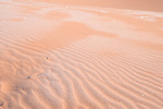 Coral Pink Sand Dunes State Park, Kanab, Utah; ripple patterns in the sand with early morning frost