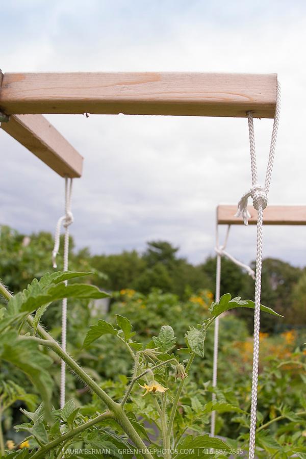 4fan trellis farm amp garden by owner sale - induced.info