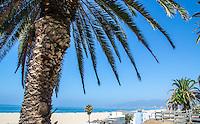 Santa Monica Beach, July 8, 2014