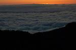 Clouds and the silhouetted trees of ,Parque nacional de las Cañadas,Tenerife, Gran Canaria, Spain