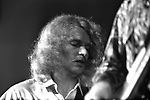 Creedence Clearwater Revival CCR 1970 Tom Fogerty at  Albert Hall