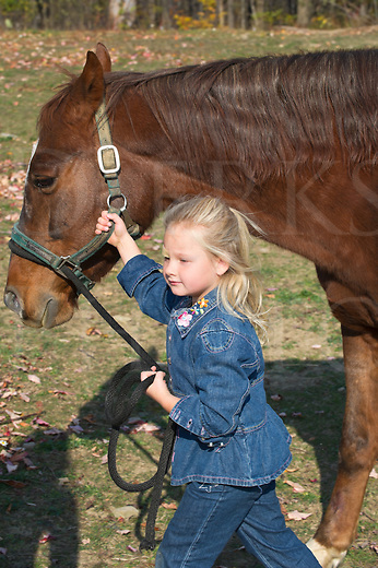 Young blonde girl 4-5 years leading large quarter horse by the halter and lead rope.