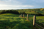 Fence stretching across rolling farmland on the Atherton Tablelands.  Millaa Millaa, Queensland, Australia