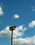 A wooden birdhouse on a tall pole against a cloudy blue sky.<br /> [This photograph is currently licensed through Millennium Images - please contact the photographer for details]