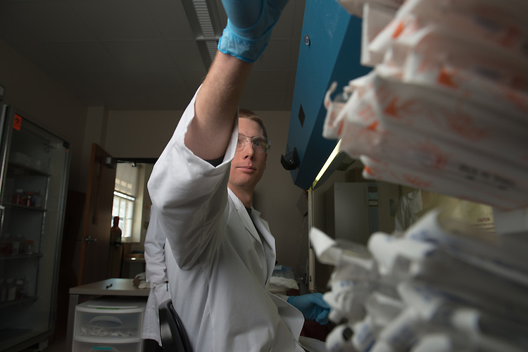 Graduate student Eric Martin works with Monica Burdick in her lab. Photo by Ben Siegel
