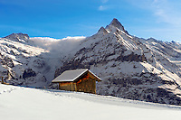 Mountain chalet in winter looking towards the wetterhorn mountain. Grindelwald, Swiss Alps