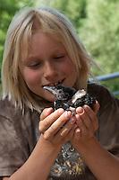 Kind mit Elster, verwaistes Küken in Menschenhand wird gepflegt, Wildtieraufzucht, Pica pica, Magpie, Pie bavarde
