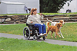 Woman In Wheelchair & Dogs