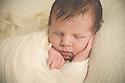 Hallie B Newborn Session Baby Bee
