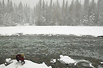 A lone snowshoer pauses to take a drink from the nearly frozen river.