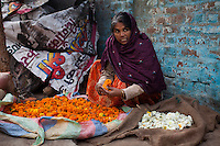 Urmila Maurya, 38, strings flowers on the roadside next to a sheet of tarpaulin that she uses as a blanket when she sleeps on the pavement in the institutional area of Lodi Colony, an upmarket area in New Delhi, India on 03 January 2012. A mother of 2, she spends her days on the pavement stringing flowers into garlands for devotees at the nearby Hindu temple. At night, she lays down on the same plastic tarpaulin she uses for the flowers but claims that the police come and tear it up in an attempt to discourage her from squatting in the open. Photo by Suzanne Lee for The National