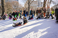 Visitors to Pilgrim Hill in Central Park sled down the aftermath of Winter Storm Jonas on Sunday, January 24, 2016. The blizzard dumped 26.8 inches onto Central Park making it the second-highest amount since records started in 1869.  (© Richard B. Levine)