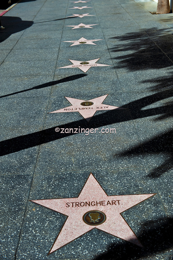 Strongheart, canine star of silent cinema, Hollywood, Boulevard, Star, Walk of Fame, Hollywood, Ca,