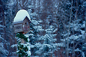 Snow covered birdhouse on fence post