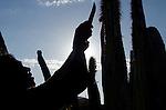 Año Nuevo Comcaac 2012