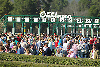 HOT SPRINGS, AR - MARCH 18: Huge crowds packed the infield of Oaklawn Park before the running Azeri Stakes at Oaklawn Park on March 18, 2017 in Hot Springs, Arkansas. (Photo by Justin Manning/Eclipse Sportswire/Getty Images)