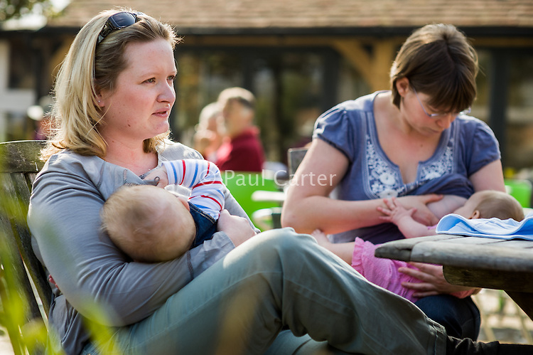 Two mothers breastfeed their babies in an outside cafe.<br /> <br /> Date taken: 30/03/12<br /> Hampshire, England, UK