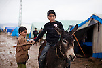 ARBAT, IRAQ: Children play with a donkey in a refugee camp on the outskirts of Arbat in the semi autonomous region of Iraqi Kurdistan. ..Refugees from Syria, most of whom are Kurds, have been arriving at camps in Kurdistan trying to escape the continuing conflict.  Arbat is located approximately 20 kilometres away from Sulaimaniyah...Photo by Ali Arkady/Metrography.