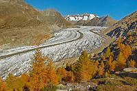 Aletsch glacier in fall, Valais, Switzerland