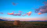 Idaho, North, Kootenai County, Coeur d'Alene. Round Bales on the Rathdrum Prairie under pink clouds at twilight.