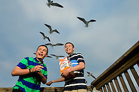 Two boys feed the seabirds along Dauphin Island, Alabama, a barrier island located three miles south of the mouth of Mobile Bay in the Gulf of Mexico. This island, which is approximately 14 miles long and less than two miles wide, appears to have fully recovered from the impact of Hurricane Katrina (2005) and the BP Deepwater Horizon Oil Spill in 2010. Both events greatly reduced tourism income (fewer people came to the island) and local business owners say many establishments went out of business. Today they say they're looking forward to a rebounding tourism business.