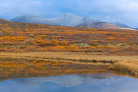 Tundra pond in the Kigluaik mountains on the Seward Peninsula, western arctic, Alaska.