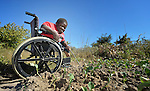 Peter Makura attends plants in his garden at his home in the village of Berejena, near Masvingo, Zimbabwe. The Jairos Jiri Association provided Makura with his wheelchair with support from CBM-US.