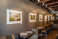 Niall David Photography | Gallery Show Opening at Whitetail Wine Bar | May 2012