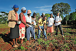 Alphonse Papouloute (center), an agronomist with the United Methodist Committee on Relief (UMCOR), talks with farmers in the rural Haitian village of Mizak about how to plant beans in order to increase their yield.