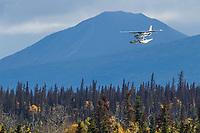 Float plane makes an approach to land on Naknek lake, Katmai National Park, southwest, Alaska.