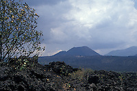 Lava fields with the cone of Volcan Paricutin in the background, Michoacan, Mexico