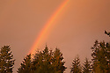 WA13376-00...WASHINGTON - Rainbow at sunset in Edmonds.