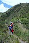 CSBSJU Group Hiking, Sendero las orquideas (orchid trail)